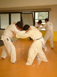 Martial Arts: Traditional Japanese Karate-Do Portland, OR #Kids #Events