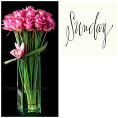 <3 Hello Sunday, Happy Sunday, Namaste, Collages, Glass Vase, Joy, Ideas, Decor, Decoration