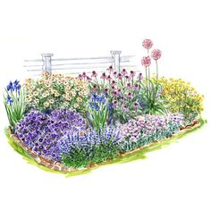 Garden designs on pinterest perennial gardens shade for Easy care front gardens