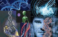 La Hermandad Galáctica: Proyecto Genoma: experimento extraterrestre
