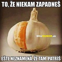 To, že někam zapadneš ještě neznamená, že tam patříš. Good Jokes, Funny Jokes, Favorite Quotes, Humor, Lol, Words, Husky Jokes, Humour, Funny Photos