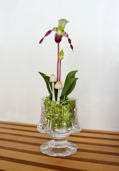 Clay Lady Slipper Orchid Flower Arrangement Terrarium