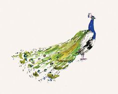 Peacock Print - contemporary - artwork - Happy Menocal