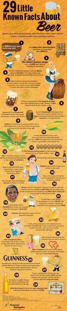 """October 27 is National American Beer Day (which sort of begs the question, why would it be anything other than """"National,"""" but we digress)! 29 interesting facts of beer. More Beer, All Beer, Wine And Beer, Erdinger Beer, Beer Brewing, Home Brewing, Beer Infographic, Beer Tasting Parties, American Beer"""