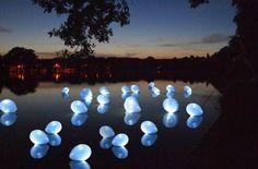 Ledlichtjes in balonnen voor bij een bruiloft!
