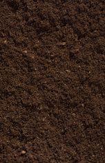 Compost Soil stock photo