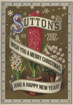 Suttons Seeds Wish You A Merry Christmas