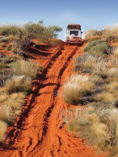 Offroad with a Mercedes-Benz G-Class in the Australian Outback Mercedes G, Mercedes Benz G Class, Australia Living, Australia Travel, Road Pictures, Back Road, East Coast, Offroad, Places To Go