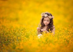 Field of Gold by Lisa Holloway on 500px