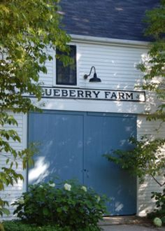 In Camden, Maine / They breed alpacas on Blueberry Farm. Blueberry Farm, Blueberry Picking, Blueberry Bushes, Country Blue, Country Farm, Country Living, Camden Maine, Cottage Farmhouse, Farm Life