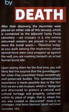 Museo de las Momias de Guanajuato- Visiting the Dead in Guanajuato | The Expat Experiment Mummy Museum, Experiment, Death, The Mummy, Museums