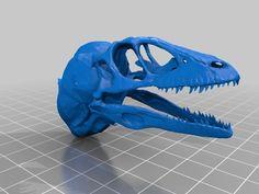 Dinosaur Skull w/ Neck