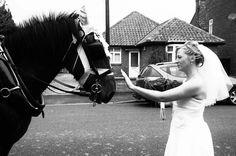 One of my wedding photos :-) #wedding #photography #bridal #beauty #horse