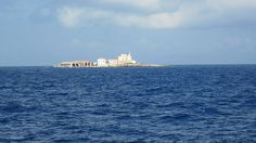 Isole Egadi: Formica