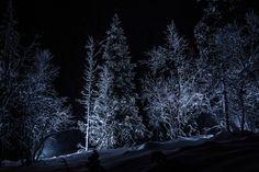 Midnight Wonderland by James Lacey, via 500px