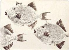 Rockflowerpaper Triggerfish Placemats