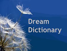 Author Kari Hohne's free online dream dictionary, online I Ching and free Tarot reading, yoga music and nature's way of success. Dream Psychology, Psychology Facts, Lucid Dreaming, Dreaming Of You, Dream Dictionary, Dictionary Free, Dream Interpretation Symbols, What Dreams Mean, Dream Definition