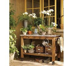 potting bench/orchids