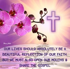 Our lives should absolutely be a beautiful reflection of our faith, but we must also open our mouths & share the Gospel Deuteronomy 31:6 Be strong and of good courage, do not fear nor be afraid of them; for the Lord your God, He is the One who goes with you. He will not leave you nor forsake you. 2 Timothy 1:8. Therefore do not be ashamed of the testimony of our Lord, nor of me His prisoner, but share with me in the sufferings for the gospel according to the power of God,