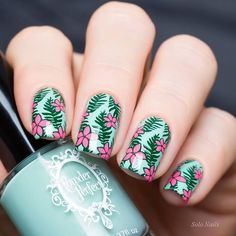 """Powder Perfect """"Legend Says..."""", """"Whataboutery"""" (Quest For Paradise Collection) & stamping MoYou London Tropical Collection 14."""