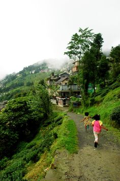 Girls in Darjeeling, India Darjeeling, Spas, Himalaya, Indian Village, India Tour, Hill Station, Largest Countries, Incredible India, Amazing