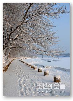 평양의 겨울정서 (1)-《조선의 오늘》