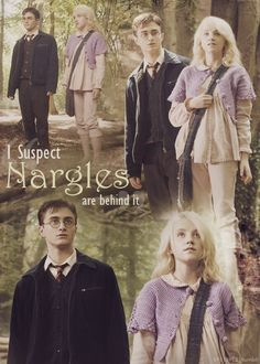I suspect Nargles are behind it. - Luna Lovegood