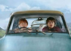 Ron and Harry trying to get to Hogwarts in Mr Weasley's flying car.