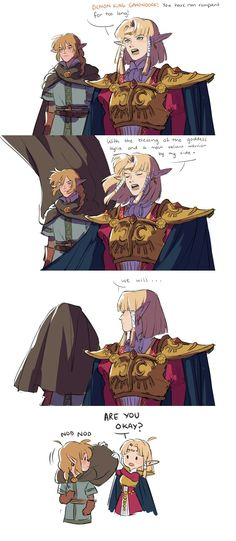 This is cute but eww Hyrule Warriors - Zelda - The Legend Of Zelda, Legend Of Zelda Memes, Legend Of Zelda Breath, Geeks, Link Zelda, Diabolik, Twilight Princess, Breath Of The Wild, Gaming Memes