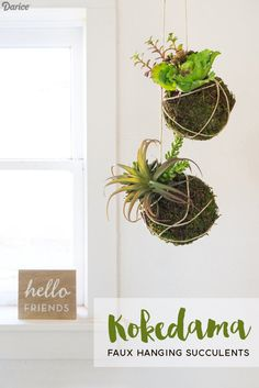 How To Make Kokedama From Darice Faux Succulents, Planting Succulents, Diy  Craft Projects,