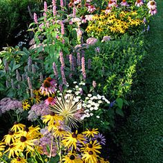 Gardener's Supply -- If you want to keep your perennial borders looking great from May through September, you need to be prepared to fill a few holes.