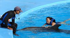 Play with the #dolphins in #Cabo.  Want to do this and book an awesome hotel?  Can't do that anywhere other than Itinerizer.  You had to search all around and probably would not have known about this.  #Vacation better... click the image.