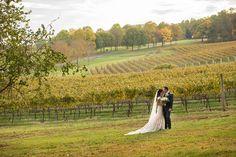 Fall is always so beautiful in Virginia's Wine Country. 🍂❤️ Photo by Vineyard Wedding Venues, Virginia Fall, Shenandoah Valley, Southern Weddings, Fall Season, Wine Country, Fall Wedding, Countryside, Vines