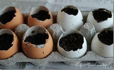 Eggstarters by lifeafterlaundry #Garden #Egg_Starter