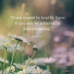 """Peace cannot be kept by force; it can only be achieved by understanding"" Albert Einstein #Quotes"