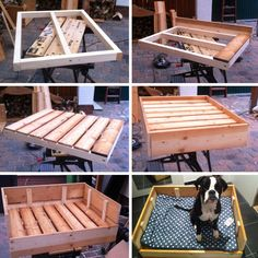 {DIY-Freutag} Build a wooden dog bed yourself Wood Dog Bed, Pallet Dog Beds, Diy Dog Bed, Dog Furniture, Furniture Projects, Diy Projects Pvc Pipes, Diy Bett, Dog Beds For Small Dogs, Pet Beds