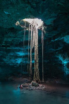 Cenotes of Yucatán Peninsula in Mexico | 27 Surreal Places To Visit Before You Die:  These sinkholes in Mexico were formed during the ice age and were held sacred by the Mayans