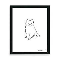 Pomeranian Framed Line Drawing