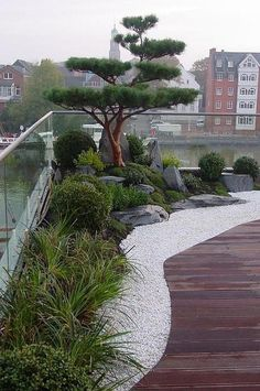 Japanese Garden Landscape, Small Japanese Garden, Japanese Garden Design, Japanese Gardens, Landscaping With Rocks, Backyard Landscaping, Landscaping Ideas, Patio Ideas, Landscaping Borders