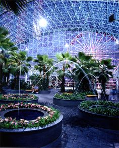 Crystal Gardens at Navy Pier, things to do in Chicago Chicago Vacation, Chicago Travel, Chicago Trip, Navy Pier Chicago, Chicago Skyline, Great Places, Places To See, Beautiful Places, Chicago Attractions