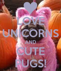 LOVE UNICORNS AND CUTE PUGS!