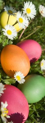 Easter Eggs-a pretty picture