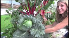 We are back for the season with a whole NEW Wave of video's. Get ready for a exciting year with Art Garden. Aeroponics is awesome and we are so excited to sh...