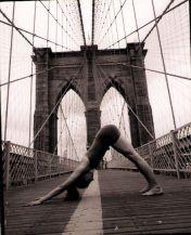 Yoga - Adho Mukha Svanasana o postura del perro boca abajo
