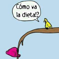 chiste grafico como va la dieta