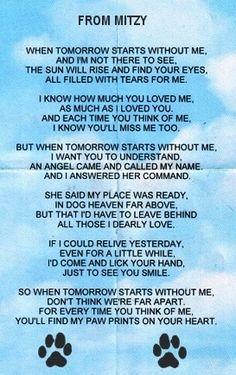 Pet Remembrance