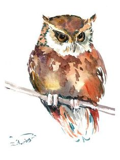 Giclee Print: Owl 4 by Suren Nersisyan : Owl Watercolor, Watercolor Animals, Watercolor Paintings, Watercolors, Owl Art, Bird Art, Guache, Bird Drawings, Animal Paintings