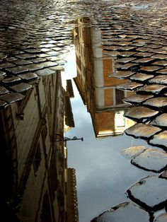 Rome streets after the rain. so many people forget that you can find beauty even beneath your feet.