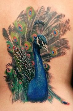foot tattoos for women peacock | Peacock Tattoos - TattooFan