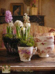 Hyacinten (1) From: Helene Flont, please visit